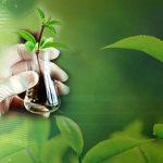 Biyoloji Nedir? Biyolojinin Çalışma Alanları ve Temel Prensipleri