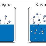Buharlaşma ve Kaynama Arasındaki Farklar (Kısaca Maddeler Halinde)