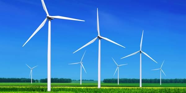Rüzgâr Enerjisi, Rüzgâr gülü