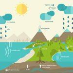 Nem, Bağıl Nem ve Kuru Hava Nedir? Atmosferde Su Buharı ve Önemi