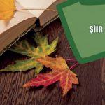 Konularına Göre Şiir Türleri – Lirik, Epik, Satirik, Didaktik, Pastoral Şiir